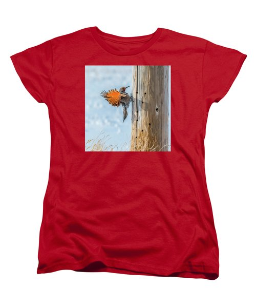 Brilliant Northern Flicker Woodpecker Women's T-Shirt (Standard Cut) by Yeates Photography