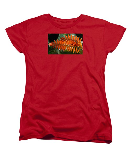 Brilliant Orange Nature Women's T-Shirt (Standard Cut) by Steve Archbold