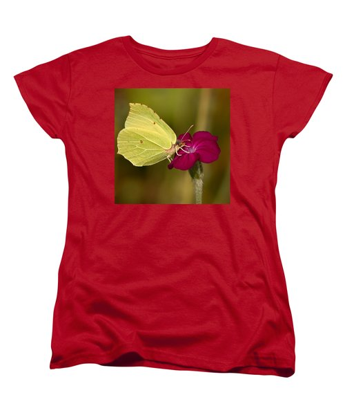Women's T-Shirt (Standard Cut) featuring the photograph Brimstone 1 by Jouko Lehto