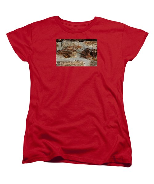 Bronze Symmetry Women's T-Shirt (Standard Cut) by Deborah  Crew-Johnson