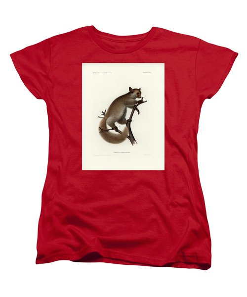 Brown Greater Galago Or Thick-tailed Bushbaby Women's T-Shirt (Standard Cut) by Hugo Troschel and J D L Franz Wagner