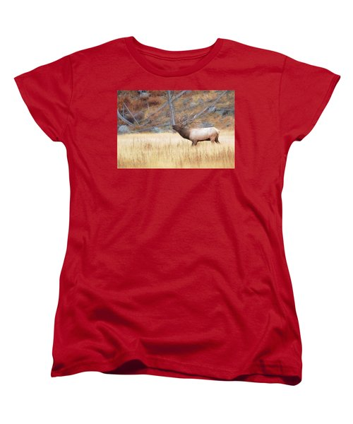 Bull Elk Women's T-Shirt (Standard Cut) by Kelly Marquardt