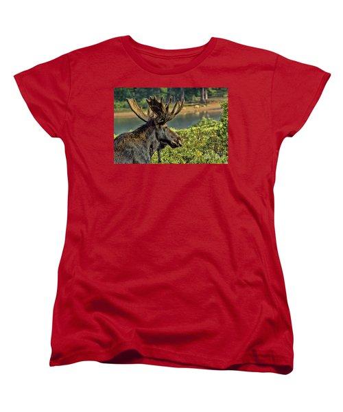 Bull Moose Women's T-Shirt (Standard Cut) by Steven Parker
