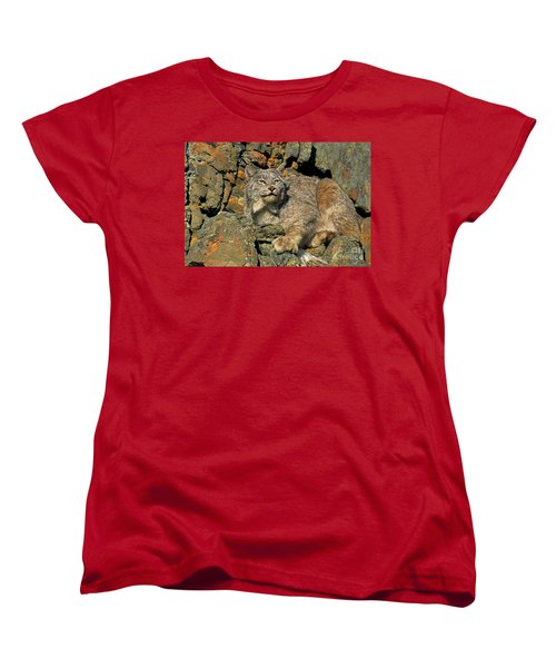 Women's T-Shirt (Standard Cut) featuring the photograph Canadian Lynx On Lichen-covered Cliff Endangered Species by Dave Welling