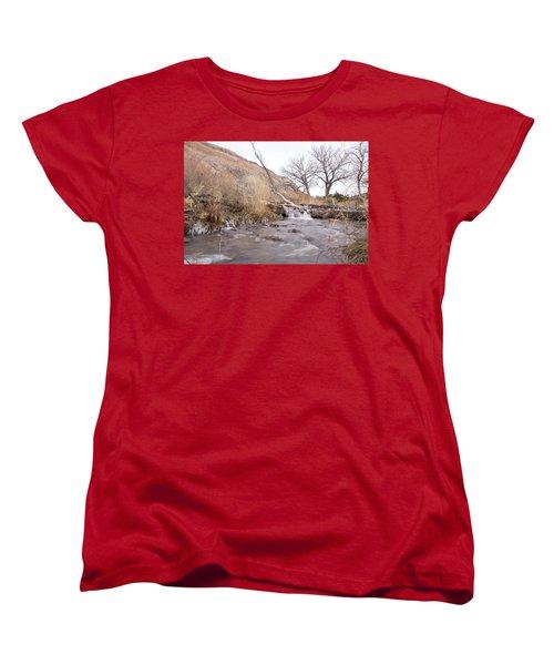 Canyon Stream Current Women's T-Shirt (Standard Cut) by Ricky Dean