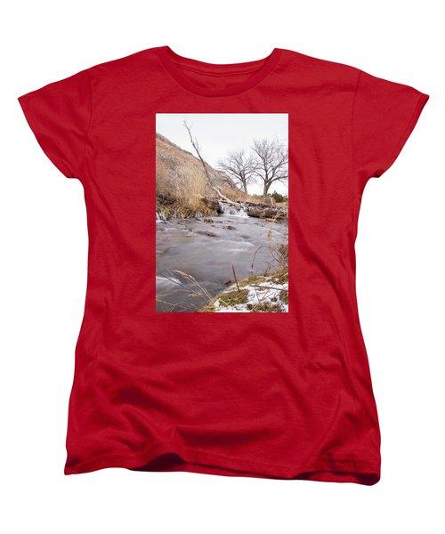 Canyon Stream Falls Women's T-Shirt (Standard Cut) by Ricky Dean