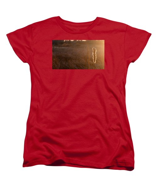 Women's T-Shirt (Standard Cut) featuring the photograph Cattail At Sunrise by Monte Stevens