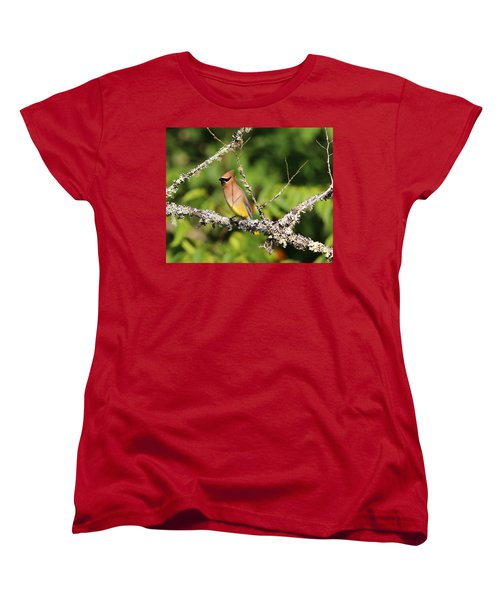 Cedar Waxwing  Women's T-Shirt (Standard Cut) by Carol R Montoya