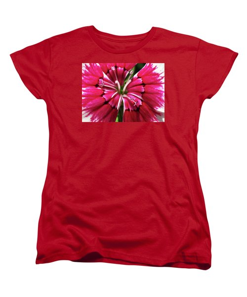 Center Of A Sweet William Women's T-Shirt (Standard Cut) by Mary Ellen Frazee