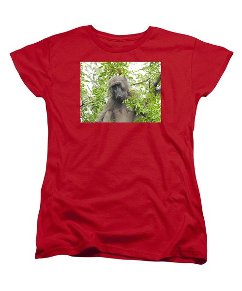 Chacma Baboon Women's T-Shirt (Standard Cut) by Betty-Anne McDonald