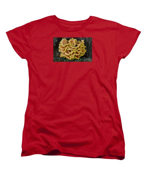 Women's T-Shirt (Standard Cut) featuring the photograph Chicken Of The Woods by Randy Bodkins