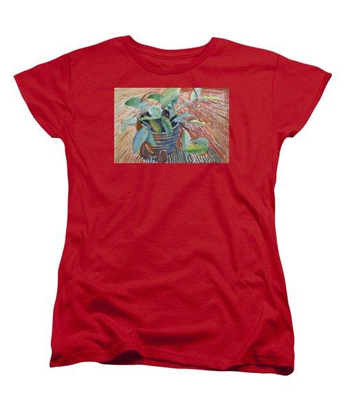Clay Pot Women's T-Shirt (Standard Cut) by Ruth Kamenev