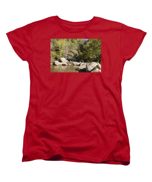 Clear Water Stream Women's T-Shirt (Standard Cut) by Ricky Dean