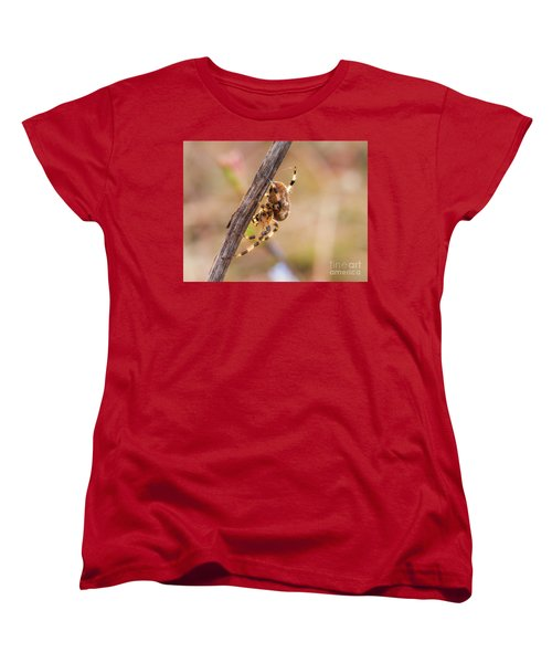 Colorful Spider Hanging From The Stick  Women's T-Shirt (Standard Cut) by Gurgen Bakhshetsyan