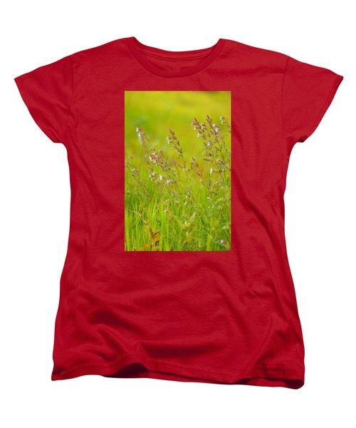 Colors Of Spring Women's T-Shirt (Standard Cut) by Rachel Mirror