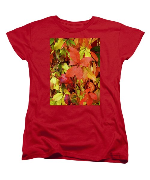Colours Of Autumn Women's T-Shirt (Standard Cut) by Brian Chase