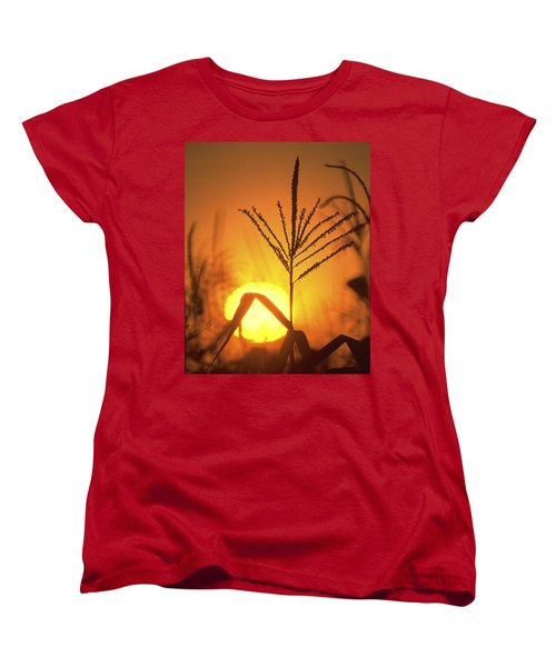 Cornfield Sunset Women's T-Shirt (Standard Cut) by Garry McMichael