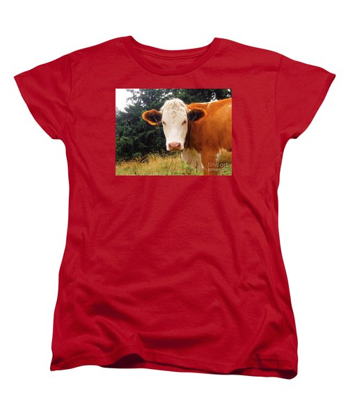 Women's T-Shirt (Standard Cut) featuring the photograph Cow In Pasture by MGL Meiklejohn Graphics Licensing