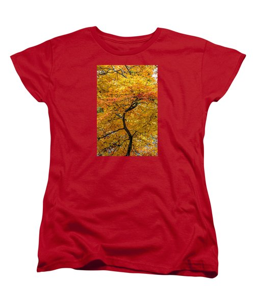 Women's T-Shirt (Standard Cut) featuring the photograph Crooked Tree Trunk by Barbara Bowen