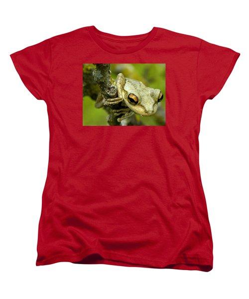 Cuban Tree Frog  Women's T-Shirt (Standard Cut) by Chris Mercer