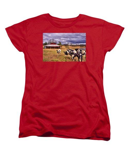 Dairy Heifer Groupies The Red Barn Art Women's T-Shirt (Standard Cut) by Reid Callaway