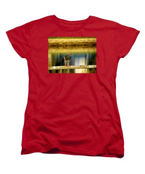 Daytona Beach Pigeon Women's T-Shirt (Standard Cut) by Chris Mercer