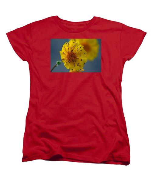 Death Valley Superbloom 102 Women's T-Shirt (Standard Cut) by Daniel Woodrum