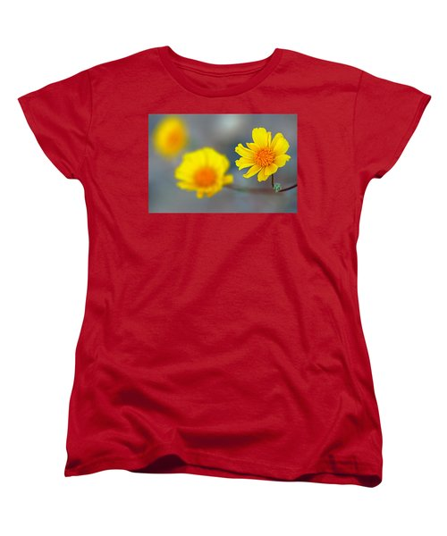 Death Valley Superbloom 204 Women's T-Shirt (Standard Cut) by Daniel Woodrum