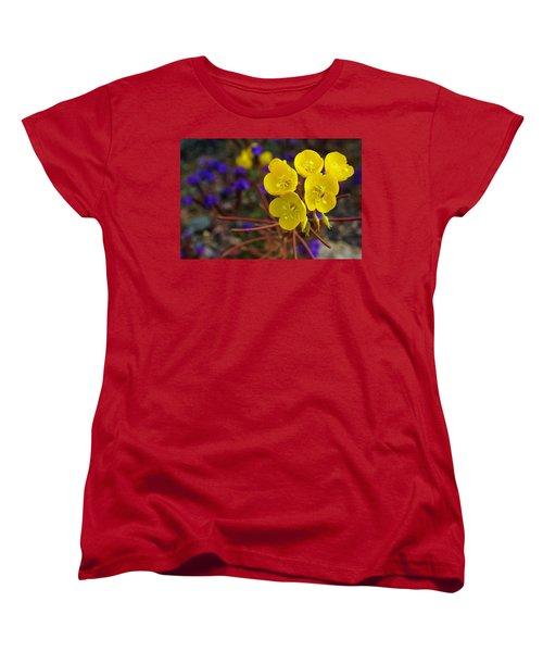 Death Valley Superbloom 206 Women's T-Shirt (Standard Cut) by Daniel Woodrum