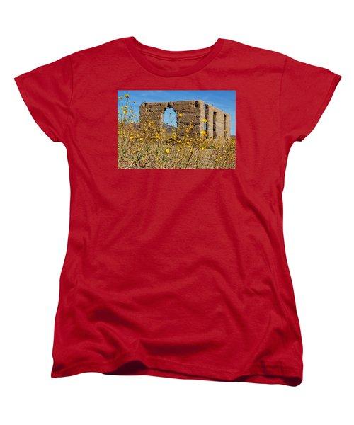 Death Valley Superbloom 404 Women's T-Shirt (Standard Cut)