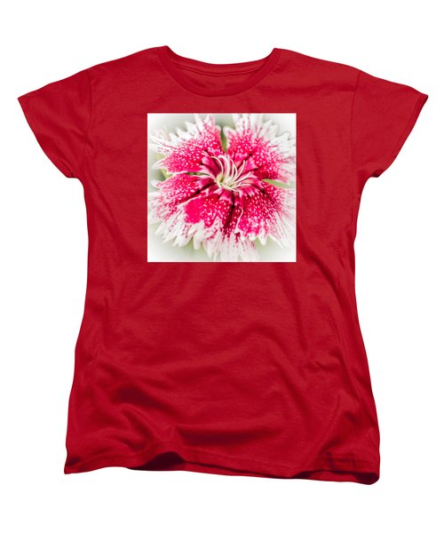 Dianthus Beauty Women's T-Shirt (Standard Cut) by Yeates Photography