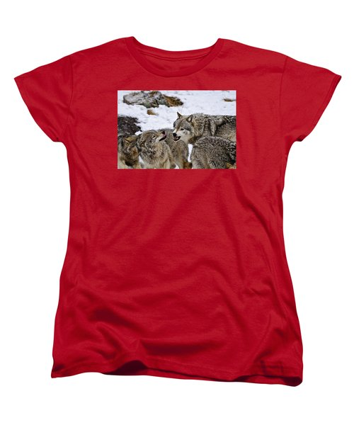 Women's T-Shirt (Standard Cut) featuring the photograph Do I Have Your Attention Now by Michael Cummings