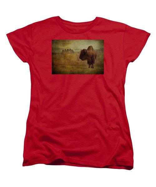 Doo Doo Valley Women's T-Shirt (Standard Cut) by Trish Tritz