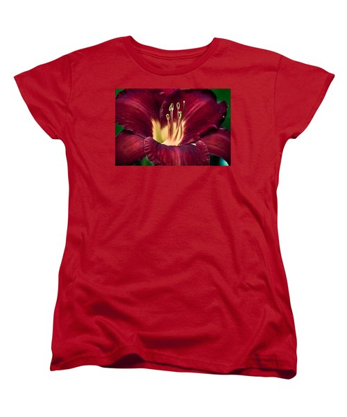 Dramatic Lily Women's T-Shirt (Standard Cut) by Jason Moynihan