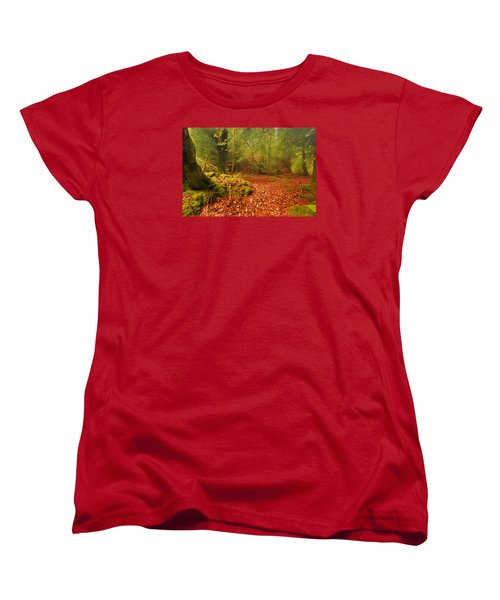 Dunstaffnage Castle Gardens Women's T-Shirt (Standard Cut)