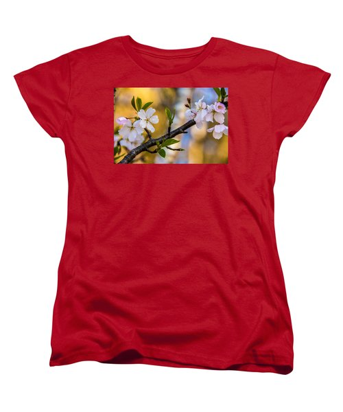 Easy Elegance Women's T-Shirt (Standard Cut) by John Harding