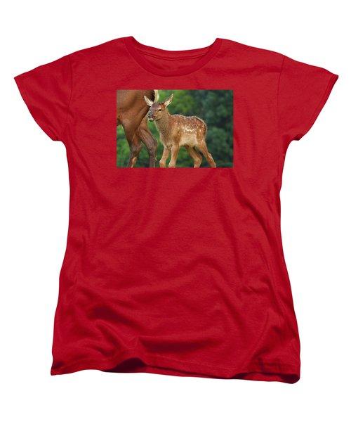 Elk Calf Arrives Women's T-Shirt (Standard Cut) by Alan Lenk