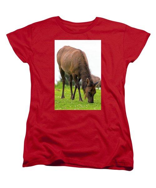 Elk Grazing On Green Pasture Closeup Women's T-Shirt (Standard Fit)