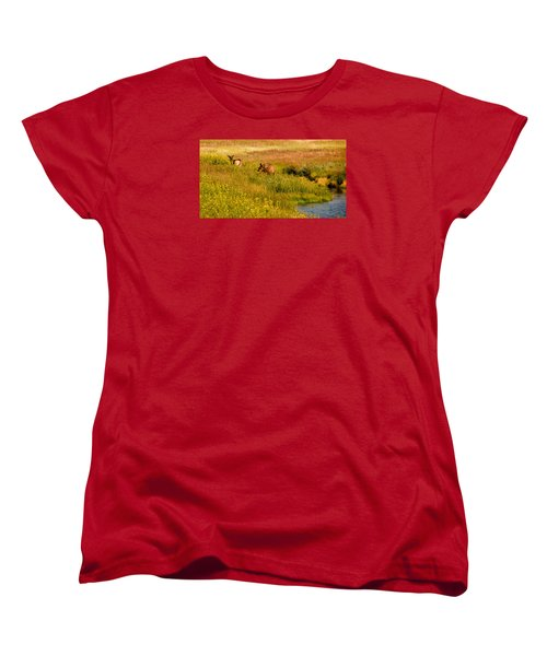 Women's T-Shirt (Standard Cut) featuring the photograph Elk In The Wild Flowers by Cathy Donohoue