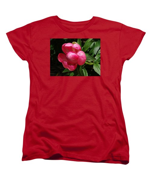 Emerging Peony Bloom Women's T-Shirt (Standard Cut) by Rebecca Overton