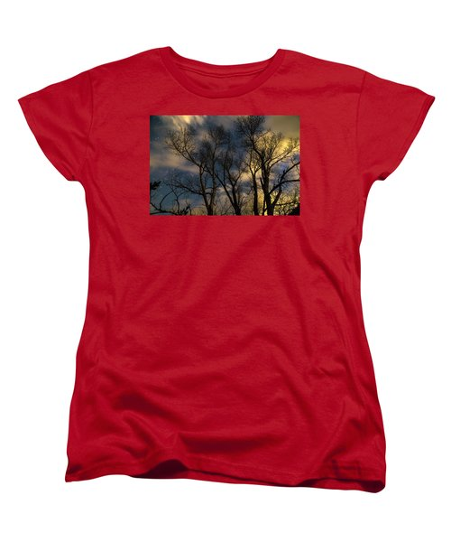Women's T-Shirt (Standard Cut) featuring the photograph Enchanting Night by James BO Insogna