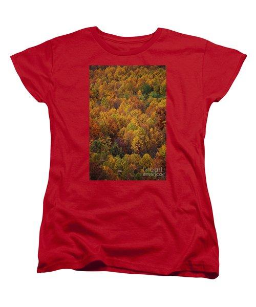 Fall Cluster Women's T-Shirt (Standard Cut) by Eric Liller