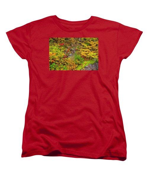 Fall Color Patchwork Women's T-Shirt (Standard Cut) by David Cote