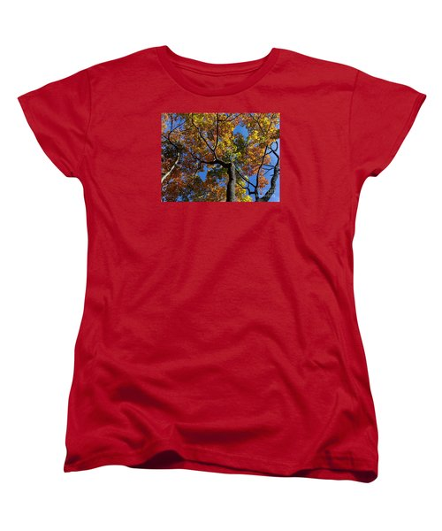 Women's T-Shirt (Standard Cut) featuring the photograph Fall Colorful Trees by Haleh Mahbod