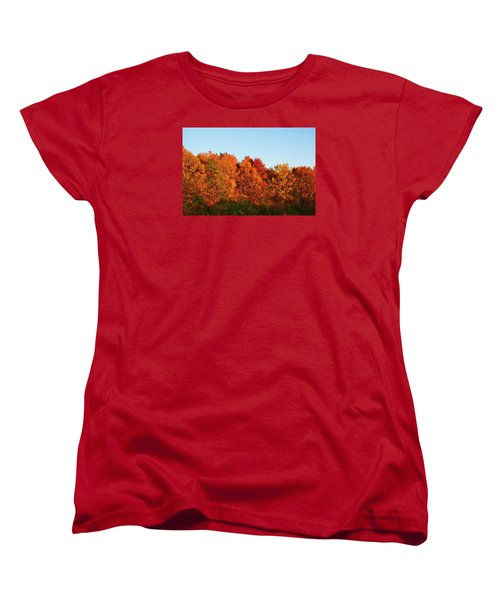 Women's T-Shirt (Standard Cut) featuring the photograph Fall Forest by Nikki McInnes