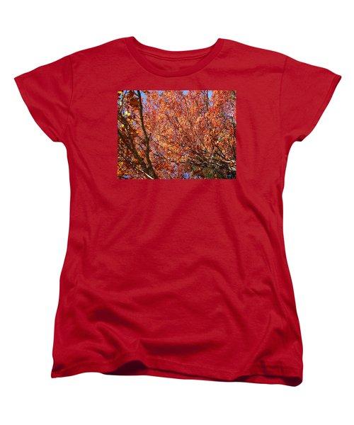 Fall In The Blue Ridge Mountains Women's T-Shirt (Standard Cut) by Flavia Westerwelle