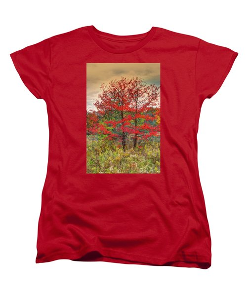 Fall Painting Women's T-Shirt (Standard Cut) by Skip Tribby