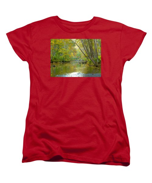 Falls Road Bridge Over The Gunpowder Falls Women's T-Shirt (Standard Cut) by Donald C Morgan