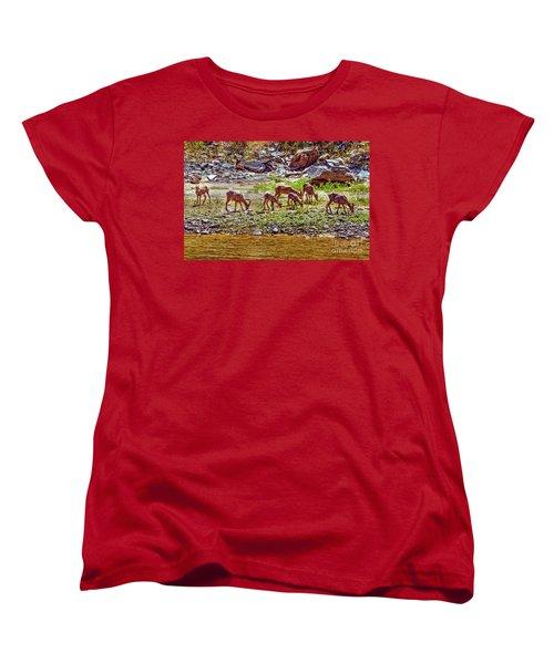 Women's T-Shirt (Standard Cut) featuring the photograph Feeding Mountain Sheep by Robert Bales