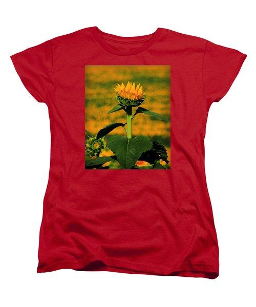 Women's T-Shirt (Standard Cut) featuring the photograph Field Of Gold by Chris Berry